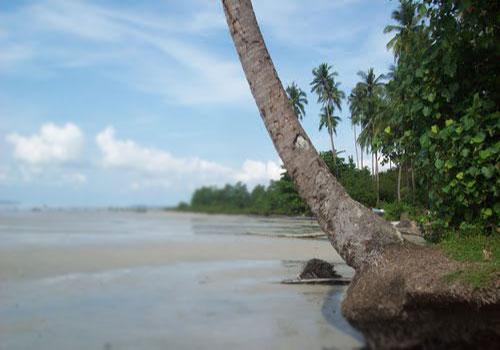 Mudong Beach Tourism