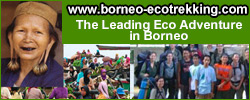 borneo-ecotrekking.com/=