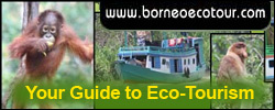 borneoecotour.com