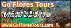 GoFloresTours.com