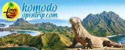 Komodo Open Trip