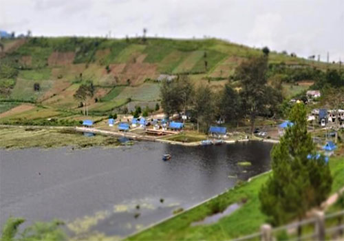 Image result for danau mas harun bastari