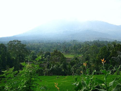 Serang, Banten