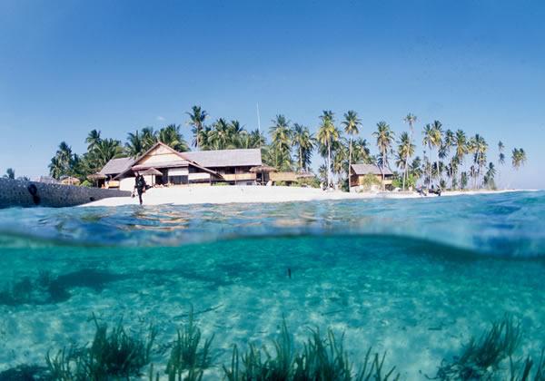 Wangiwangi Île