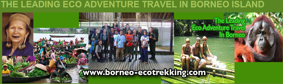 The Leading Eco Adventure Travel In Borneo Island