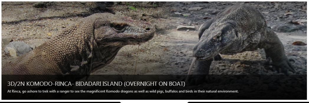 Komodo Island Adventure Tours, Flores - East Nusa Tenggara
