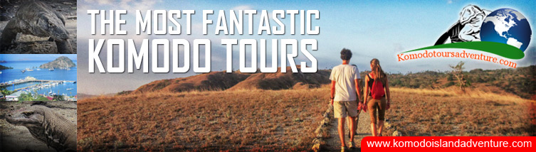 Komodo Island Adventure Tours, East Nusa Tenggara