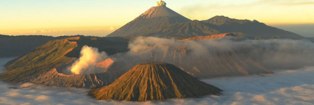 Discover Bromo Mountain With The Specialist