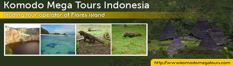 Komodo Mega Tours Indonesia