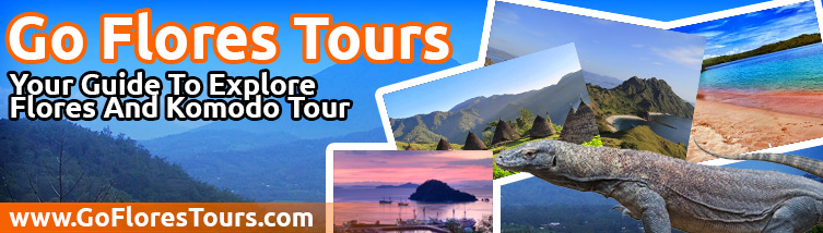 Go Florest Tours, Your Travel Companion at Komodo Island