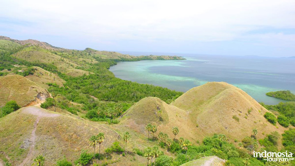 Amelia Sea View in Labuan Bajo