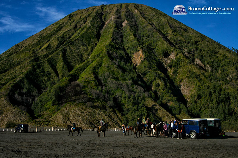 Bromo Cottages, the Finest Cottages with A Great View of Bromo Mountain