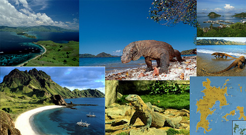 Komodo Island East Lesser Sund...
