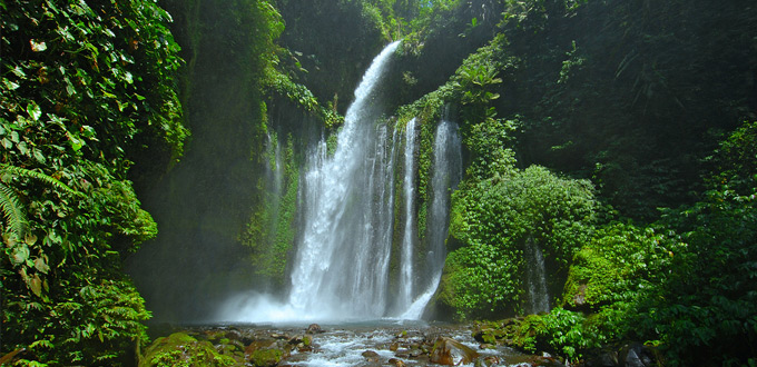 Tiu-Kelep-waterfall-lombok-NTB