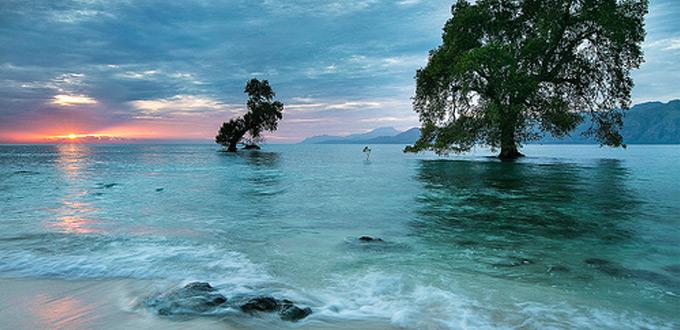 East Nusa Tenggara Tour And Travel Indonesia Guide You
