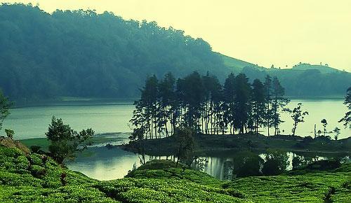 Patengan Lake Or Patengan Situ Tourism