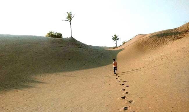 Parangkusumo Sand Dune in Bantul Regency, Yogyakarta Special Region